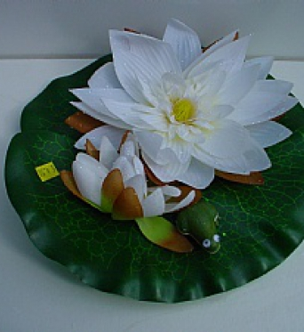 Water Lily With Frog White
